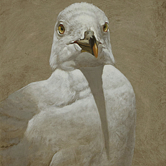 Portrait of Gull - Mixed Media on Canvas - 20 x 16 - $22,500<br />