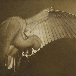 Study for Wing - Oil on Canvas - 18 x 30 - $22,500<br />