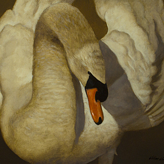 Swan Song - Oil on Canvas - 16 x 20 - $30,000<br />